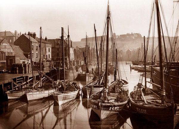 Whitby Harbour, late 19th century Copyright Frank Sutclife Gallery